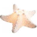 Bougeoirs étoiles de mer