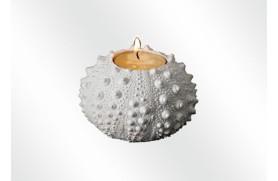 Hedgehog candelholder