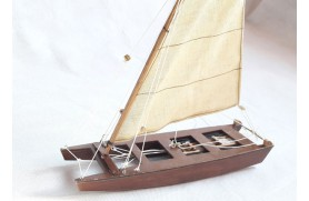 Small Sailing patin