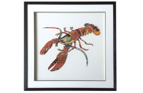 Picture marine lobster