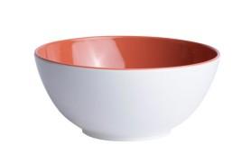 Set 6 Bowl Coral