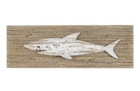 Picture marine shark